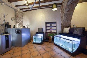 Rufoo Fish Spa, El Barri Gòtic, Barcelona