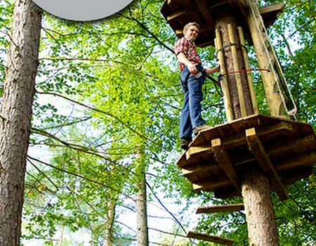 For fitness with a tree top twist, Go Ape
