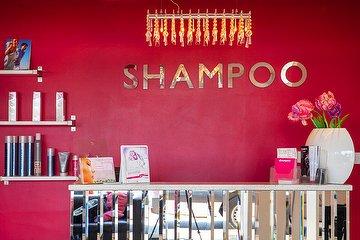 Shampoo Hair Designers