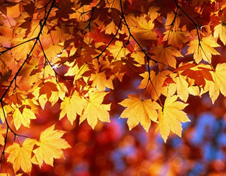 Treatwell loves: our favourite autumnal beauty buys