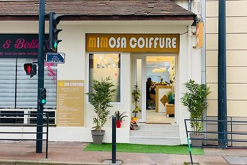 Mimosa Coiffure