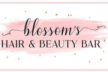 Blossom Hair And Beauty Bar, Marchmont, Edinburgh