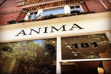 Anima House, Parsons Green, London