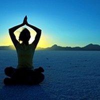 Yoga Power Plate