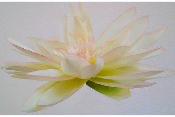 Naturkosmetik und Shiatsu Sylt