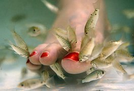 77% off Fish Pedicure for 2 People With iPad Use